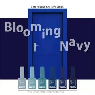 Kenzico Blooming Navy Collection